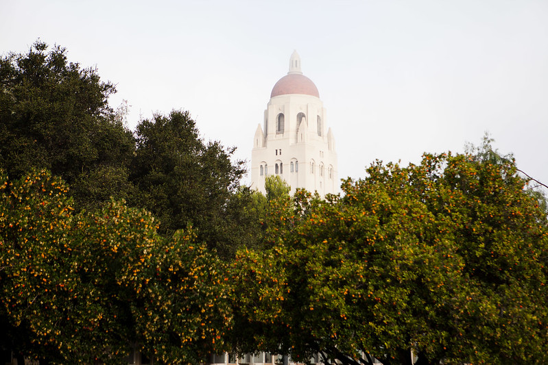 stanford campus fog  hoover tower  by dan nguyen   new york city